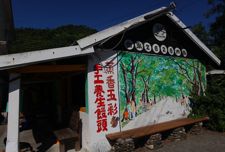 台東景點鹿野武陵綠色隧道B14