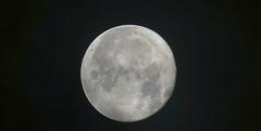 Luna - Moon SX60 HS IS handheld - viewfinder