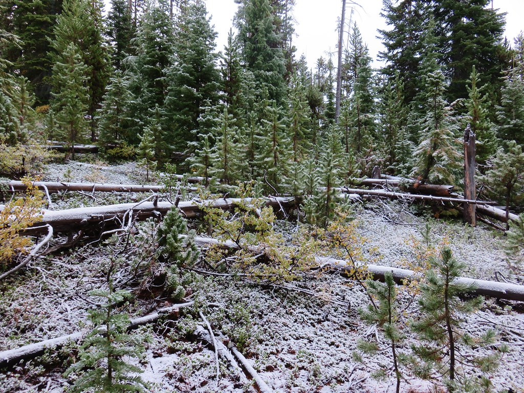 Snow near the north end of Lucky Lake