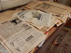 Newspaper Selection