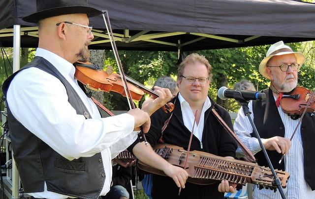 Midsummer musicians