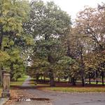 Ashton Park, Preston