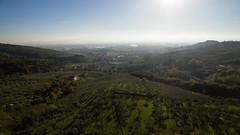 Montemurlo landscape