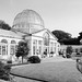 Syon House & Gardens -30 16102017-Edit.jpg