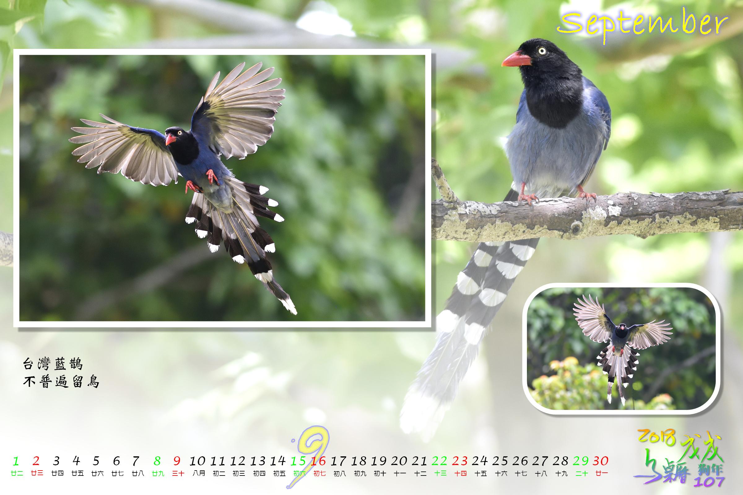 Calendar2018_Alder2_09