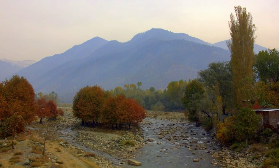 Fall colours in Kashmir