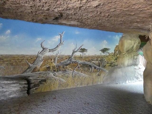 Tunnel zur Löwenanlage, Tiergarten Schönbrunn