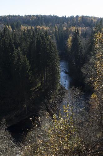 latvia amatamunicipality drabešiparish amatasnovads drabešupagasts panoramio