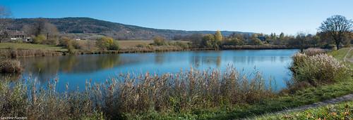 Thézillieu - Plan d'eau du Genevray