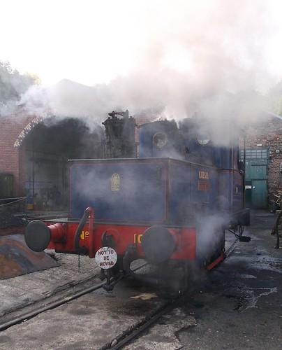 Steamy Sentinel