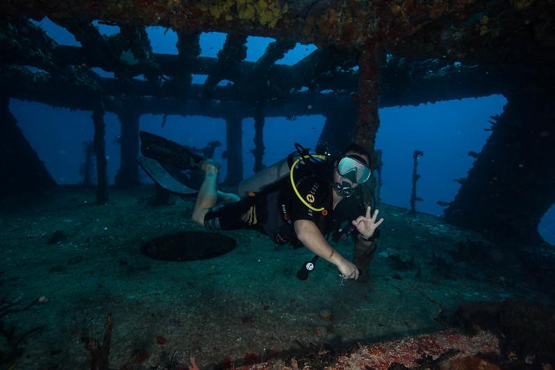 diving (15 de 77)