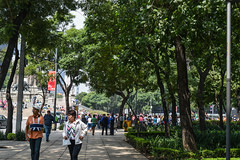 Paseo de la Reforma in Mexico City