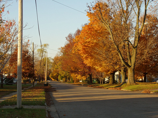 The Street Where I Live