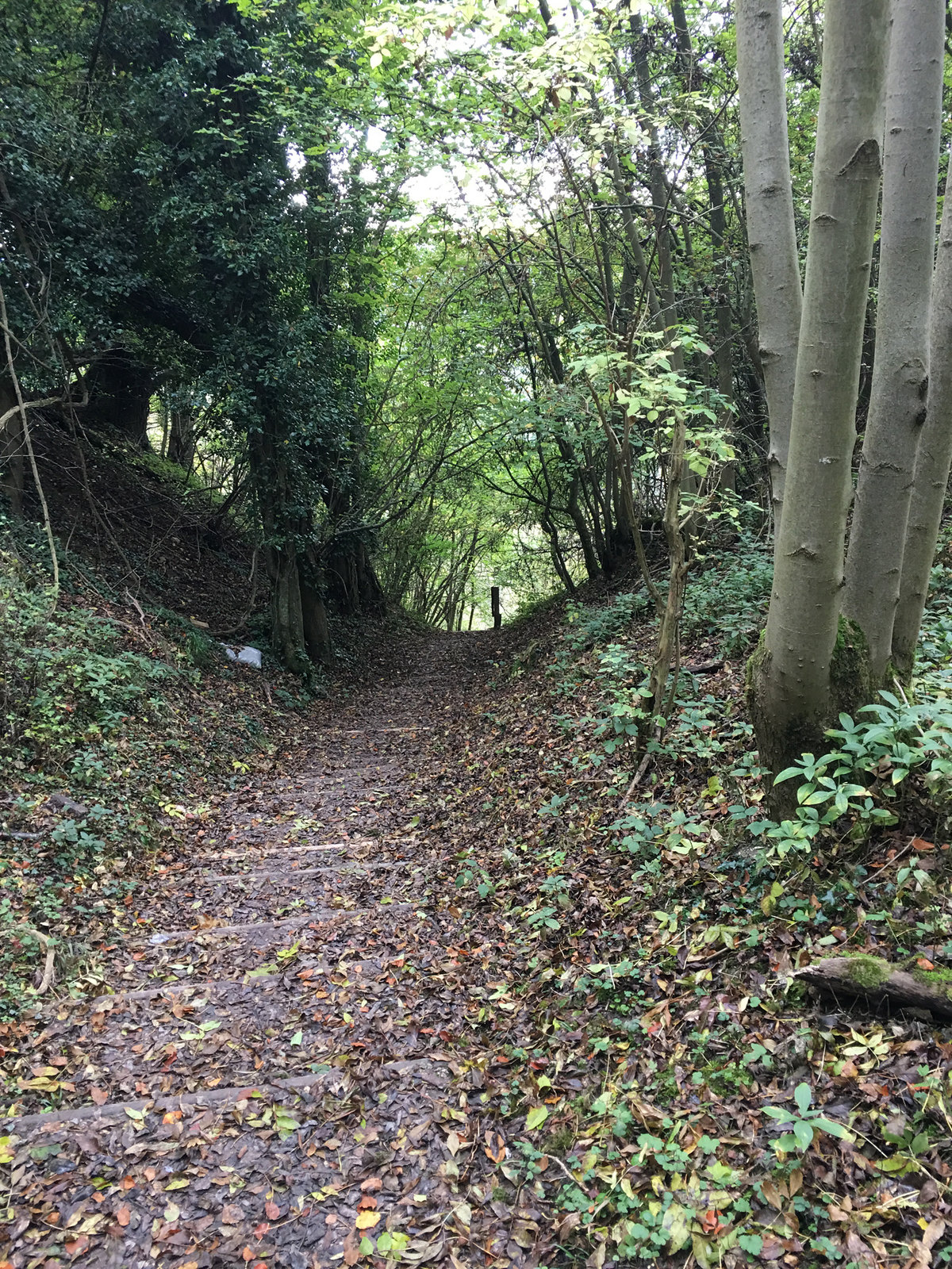 2017-10-08 09.46.57 Woldingham Circular