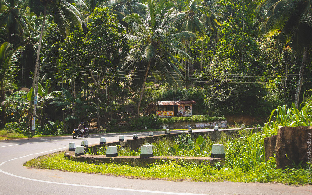 23.06-Sinharaja-Sri-Lanka-canon-1500px-005