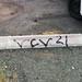 VARRIO CAMPO VIDA 21