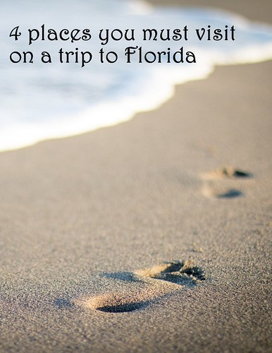 4 places you must visit on a trip to Florida