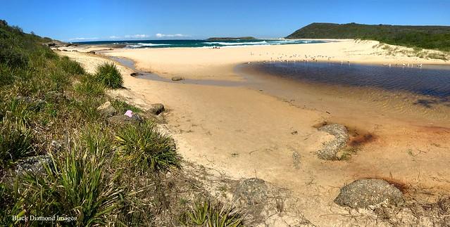 Moonee Beach, Catherine Hill Bay, Newcastle, NSW