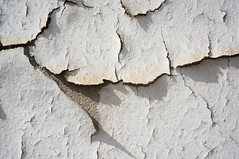 Untitledbecause I'm out of captions  Cracked Textured  Weathered Backgrounds Fissure Wall Shock Damaged Ruined Decaying Decaying Paint Decay Beauty Of Decay Rough Bad Condition Architecture ArchiTexture MnM MnMl Mnmlsm Minimalism Minimal Minimalistic Mini