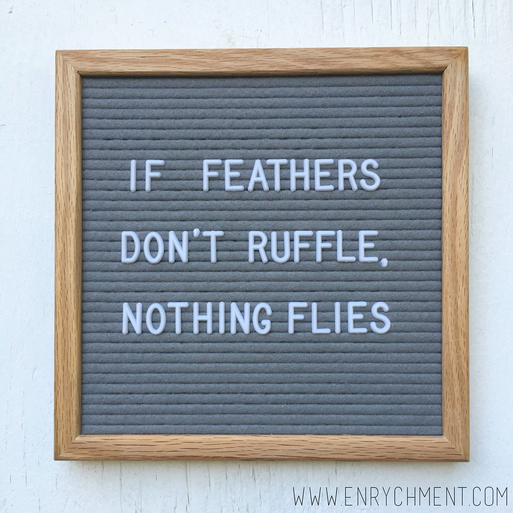 ruffle feathers letterboard