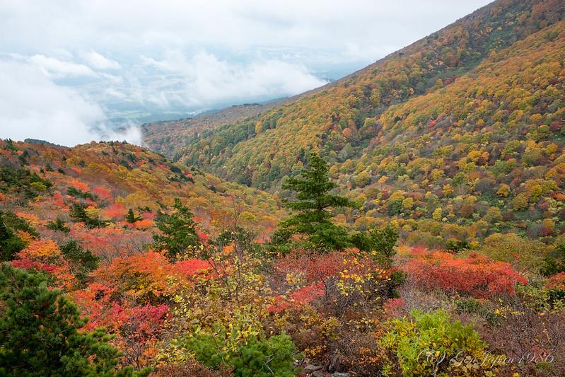 赤埴山 山頂から見た紅葉