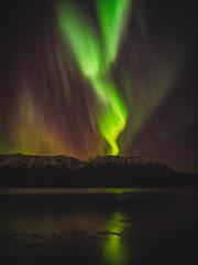 Aurora Borealis-220069