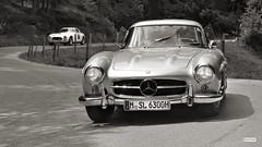 Mercedes-Benz 300 SL 1955 Wallner (c) 2017 Бернхард Эггер :: ru-moto images 2990 sepia