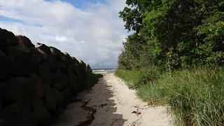 einen Pfad oder Weg am Ufer von Rügen 02324