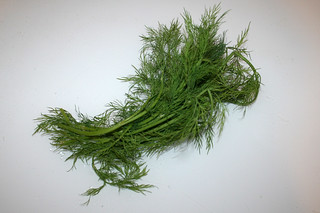 06 - Zutat frischer Dill / Ingredient fresh dill