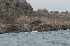 One of the structures at the Farallons
