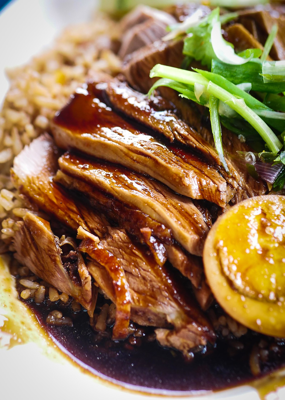 Chuan Kee Duck Rice Closeup