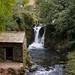 Rydal Beck Waterfall  21