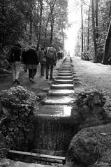 L'escalier d'eau du Parc du Haut-Rosay - Photo of Courgent