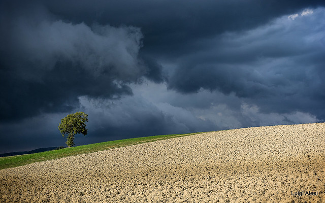 Before the rain - Marche countryside