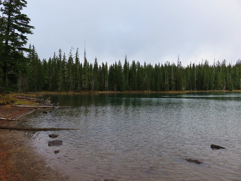 Puppy Lake