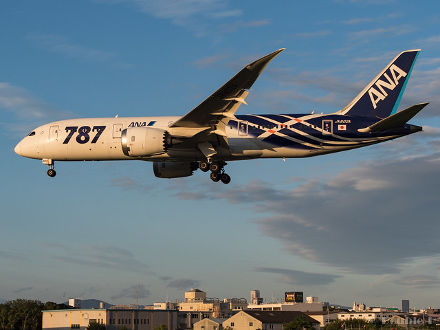 Itami Airport 2017.9.28 (10) JA802A / ANA's B787-8 commemorative painted of first delivery