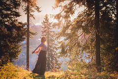 Волшебный лес / Magical forest