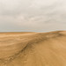 planet dune by Rasande Tyskar