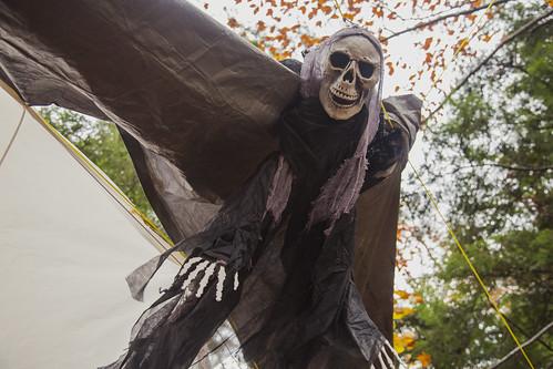 0023_witches walk_Ashwood