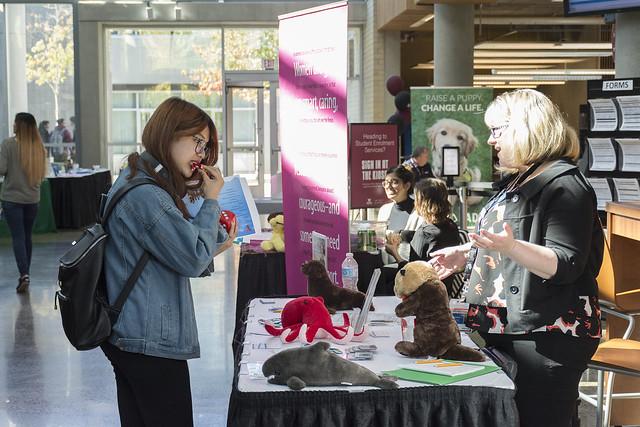 Volunteer Expo 2017