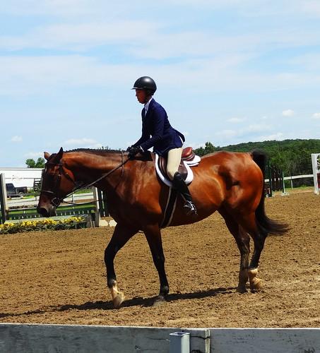 pony 094 (1)