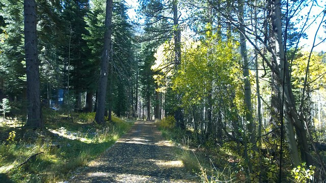 Fall at spring creek tract south lake Tahoe California
