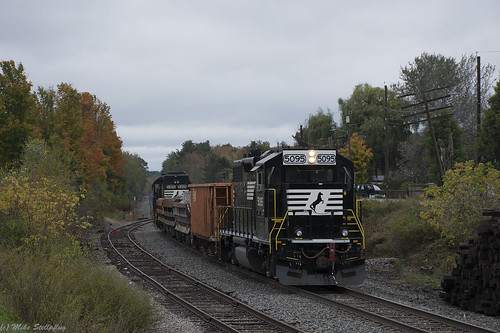NS 5095 Castile