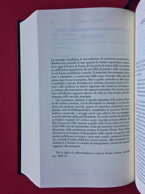 Sandro Penna, Poesie, prose e diari. Mondadori, i Meridiani; Milano 2017. Resp. gr. non indicata. Sistema dei paratesti, nota esplicativa premessa alla parte, a pag. 910 [part.].