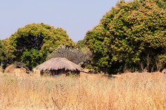 3027 Mpulungu to the Tanzanian border