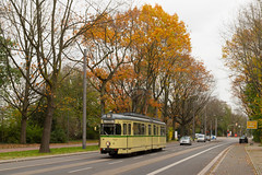 Straßenbahn im Herbst