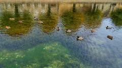 Canal de Laignes.