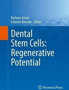 Dental Stem Cells: Regenerative Potential Free Download
