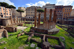 Largo di Torre Argentina, Rome, Italy  -  (Selected by GETTY IMAGES)