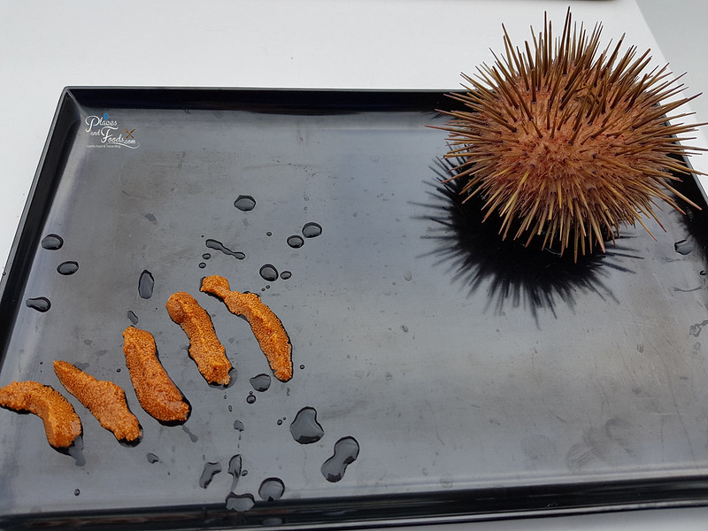 tasmania seafood seduction cruise sea urchin sashimi